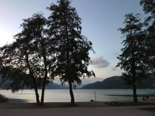 110 ristorante riviera calceranica al lago trento