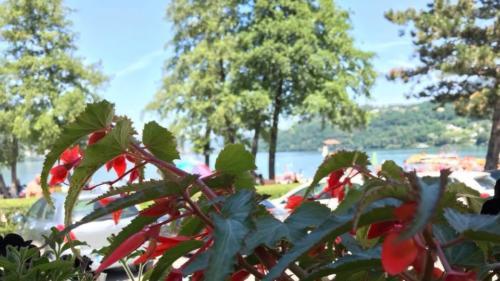 92 ristorante riviera calceranica al lago trento